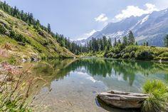 Ausflugsziele Schweiz: 99 Ideen für einen tollen Tagesausflug Hotels, Das Hotel, Switzerland, Mountains, Nature, Travel, Fitness Workouts, Art, Rainy Days