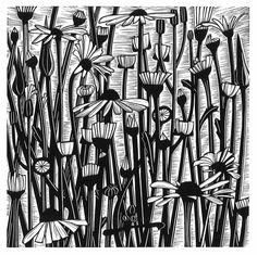 Helen Roddie ~ Daisy Fields ~ Linocut, 240 x 240 mm Lino Art, Gravure Illustration, Daisy Field, Stoff Design, Etching Prints, Linoprint, Chalk Pastels, Wood Engraving, Typography Prints