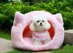 Pet Product Pet Bed Dog Bed Cat Bed Mat Sofa Dog House Cushion Warm Soft Cute
