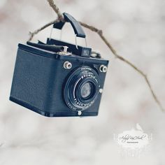 Brownie.... this was the camera my father used to photograph our childhood !