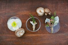 Spring Wedding Inspiration: Nature as Science #boutonniere #botanical