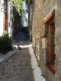 Samothraki Chios, Greece Wedding, Mystery Of History, Travel List, Greek Islands, Beautiful Places, Traveling, Outdoors, Italy