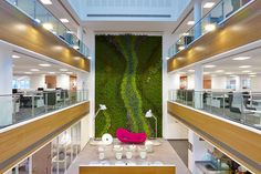 Biotecture provides innovative, flexible, modular green wall systems, offering a new level of sustainability in living walls. Vertical Garden Systems, Vertical Planting, Vertical Gardens, Home Irrigation Systems, Urban Planters, Natural Stone Wall, Outdoor Areas, Sustainable Living, Wall Design