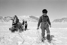 An Inuit boy untangles dogsled harnesses... / Un garçon inuit démêle des harnais d'un traîneau à chiens... | by BiblioArchives / LibraryArchives