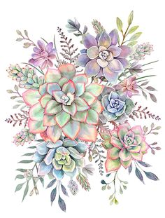 Watercolor Succulent Throw Pillow by dalleh Watercolor Succulents, Watercolor Flowers, Watercolor Paintings, Succulent Tattoo, Plant Painting, Flower Tattoos, Botanical Prints, Watercolor Illustration, Flower Art