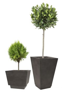 H94cm Large Anthracte Two-In-One Flared Planter