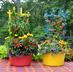 """Peppers and tomatoes are underplanted with flowers in these colorful trugs and trellises (www.kinsmangarden.com). Learn how to grow easy vegetables that look great on your patio from the book """"Easy Container Combos: Vegetables & Flowers."""" See a free, 24 page sample of the book at www.pamela-crawford.com in the 'Books' section."""