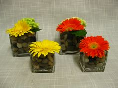 Gerbera daisy centerpieces for our brides pinterest gerbera gerbera daisy centerpieces junglespirit Gallery