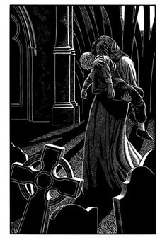 Dracula   Folio Illustrated Book
