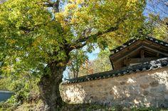 김천 섬계서원