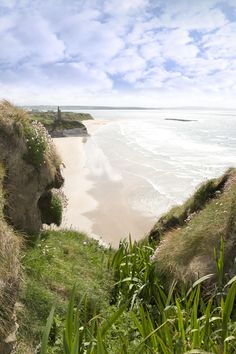 Flora view from the top of the cliffs in Ballybunion, county Kerry, Ireland by David Morrison Emerald Isle Ireland, Places To Travel, Places To See, Images Of Ireland, Places Around The World, Northern Ireland, Nature Photos, Trip Planning, Landscape Photography