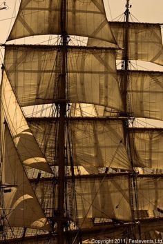 """""""acres of sail""""- The tall ships are so majestic!"""