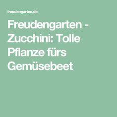 Freudengarten - Zucchini: Tolle Pflanze fürs Gemüsebeet