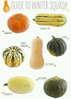 A Guide to Winter Squash. I just love winter squash. Try Giada Delaurentis' Butternut Squash Lasagna. Vegetable Recipes, Vegetarian Recipes, Cooking Recipes, Healthy Recipes, Cooking Tips, Cooking Games, Food Tips, Cooking Steak, Cooking Classes