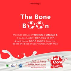 Milk is packed with nutrients like calcium & vitamin D that helps build healthy bones & maintains bone mass. Give milk to your kids regularly and watch them grow up strong! Visit Us: redcowdairy. Vitamin A Foods, Calcium Vitamins, Vitamin D, Milk Nutrition, Fresh Milk, No Dairy Recipes, Growing Up, Bones, Cow