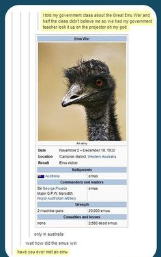 The Emu War…