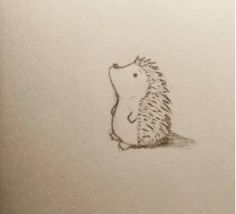 Day 150 - Cute hedgehog pencil drawing. #Hedgehog #cute #animal #drawing #art