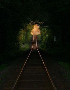 Vías del tren bajo los árboles. Francia