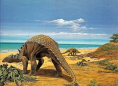 This is part of a series scanned from a book I had as a child.   Sauropelta by Ely Kish