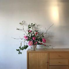 Floral, Plants, Flowers, Flora, Plant