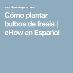 Cómo plantar bulbos de fresia | eHow en Español