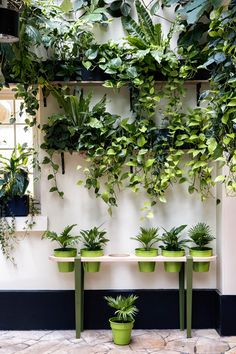 Love how you can create your own outdoor garden table for plant pots with some Tiptoe legs and a plywood. One for the urban jungle crowd I think. Garden Table, Garden Art, Garden Design, Indoor Garden, Indoor Plants, Outdoor Gardens, Porch Plants, Balcony Gardening, House Plants Decor