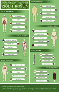Właściwości lecznicze ziół infografika Wellness Tips, Health And Wellness, Health Fitness, Cold Remedies, Health Challenge, Green Life, Natural Medicine, Nutrition Tips, Good Advice
