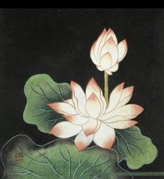 Lotus Drawing, Lotus Painting, Watercolor Paintings, Japanese Lotus, Japanese Art, Chinese Painting, Chinese Art, Tibetan Tattoo, On Golden Pond