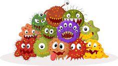 petri plate germs -