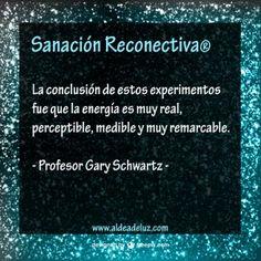 La conclusión de estos experimentos fue que la energía era muy real, perceptible, mensurable y muy remarcable. - Profesor Gary Schwartz -