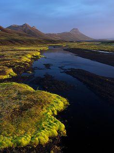 Highland Contrasts