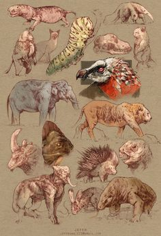 Pin by ammar fadhli on sketches in 2019 zeichnungen, skizzen Animal Sketches, Animal Drawings, Drawing Sketches, Art Drawings, Horse Drawings, Drawing Art, Pencil Drawings, Creature Concept Art, Creature Design