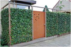 Week 9 - Bij sommige luxere woningen zoals bijvoorbeeld de herenhuizen een groene schutting