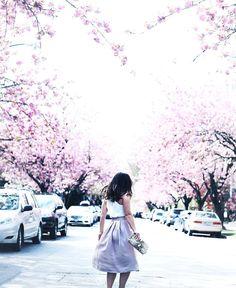 Blossom bonanza on TVOB tomorrow in @aritzia!  #cherryblossom #myaritzia #nowhereeverywhere : @aliciafashionista by tovogueorbust
