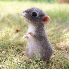 Третья подружка Самая крупненькая, но при этом, самая нежная. Мыша названа Василиской. #мышки #мышь #мышка #сухоеваляние #валяниешерсти #игрушкиизшерсти #maus #animals