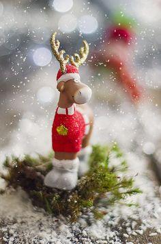 Rudolph Christmas - Christmas - kerstmis
