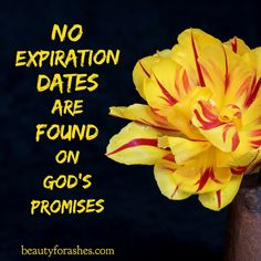 God's Promises Never expire - no #Expiration dates. However, many of them DO have conditions: All of them summed down to HONOR and OBEY God... Yearn to obey, and He forgives when we fail and just try again. He LOVES! Keep your #HOPE and #DREAMS with Him!