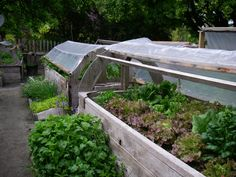 raised beds with cover