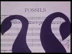 Bugs' & Daffy's Carnival of the Animals - Fossils - YouTube