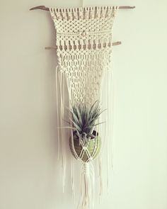 Macrame Plant Hanger made by Macrame Adventure