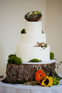 Love the cut out of a tree used for a cake riser!  Would be a cute addition to my country/rustic wedding