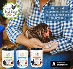 Fresh Eggs Daily® All Natural Poultry Feed Supplements. From hatch to laying age and beyond! Chicken Feed, Chicken Runs, Healthy Chicken, Clean Chicken, Chicken Treats, Chicken Scratch, Sac Recyclable, Laying Hens, Nesting Boxes