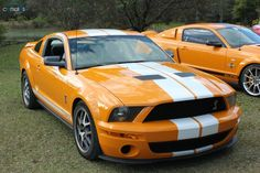2007 Ford Mustang GT500 Shelby