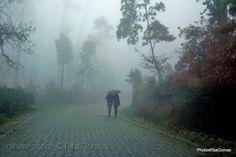 Juntinhos entre o nevoeiro