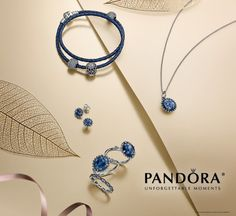 Come shop the NEW @officialpandora Autumn 2014 collection at Diamonds Direct, downtown St. Petersburg, FL!