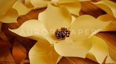 Paper flowers Instagram: @aurorapaper Jakarta
