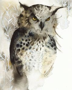 Watercolors by Amber Alexander #birds #illustration #watercolor #yellow #grey #nature #owl