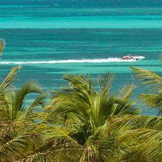 Nosso paraíso caribenho tem tudo o que você procura para se divertir todos os dias e relaxar bastante quando quiser. Converse com o seu agente de viagens e reserve agora o melhor pacote para esse feriadão prolongado. #ArubaEssaIlhaPega #OneHappyIsland