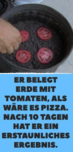Er belegt Erde mit Tomaten, als wäre es Pizza. Nach 10 Tagen hat er ein erstaunliches Ergebnis.