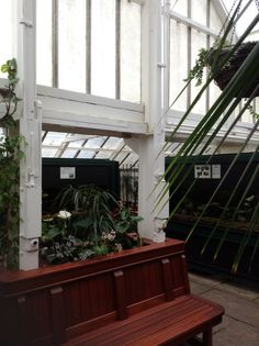 The Beautiful Victorian Conservatory At Pearson Park In Hull